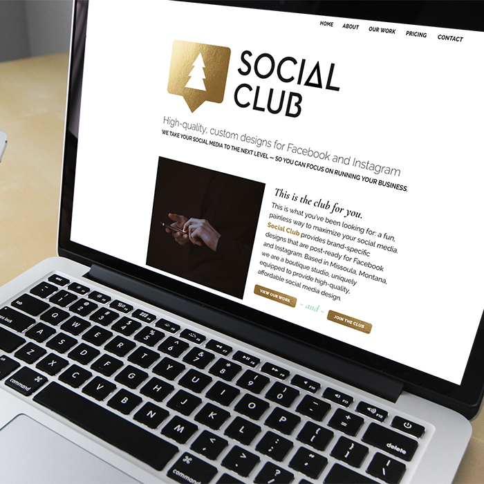Social Club website development